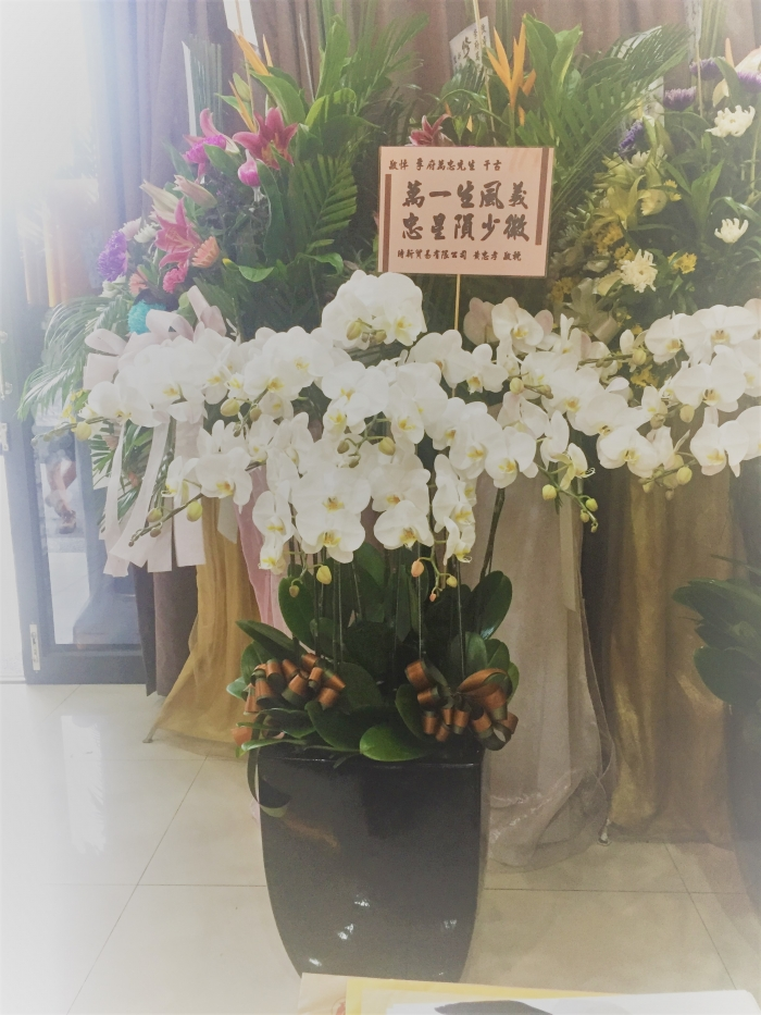 一生風義殞少徽 花店/太平花店